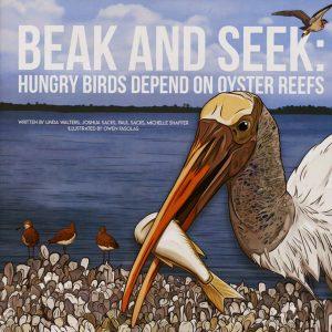 Beak and Seek book cover