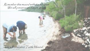 Turtle Mound
