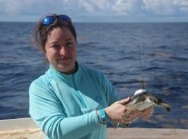Kate Sea Turtle Myth Busted 300