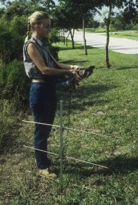 Alice Bard Gopher Tortoise Tracking