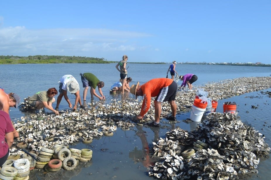 Volunteers deploy oyster mats on the CSX Reef that were created during the 2014 Knights Give Back service project.