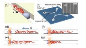aniket-group-polymer-physics